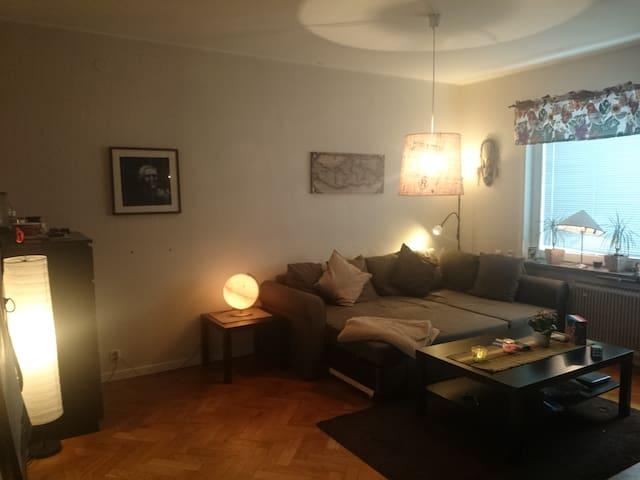 5 min walk to Globen - Stockholm - Apartemen