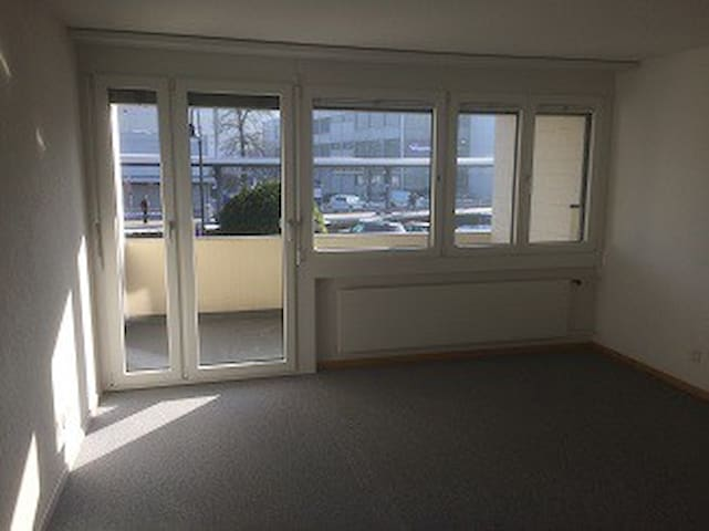 Bright studio w/ XL balcony + super pt connection - Freienbach - Apartemen