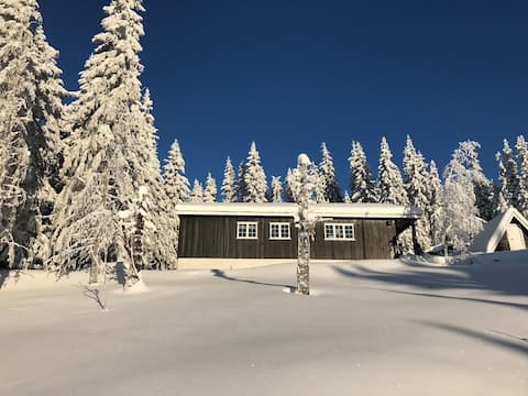 Cozy cabin 10 min from Lillehammer