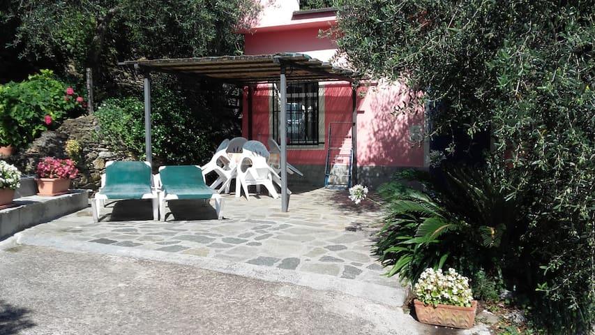 Casetta Antonella codice citra 008030-LT-0125