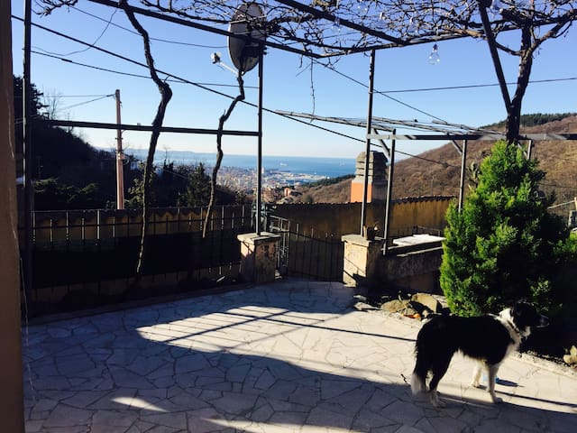 Amazing home with garden and seaview! - Trieste - Complexo de Casas