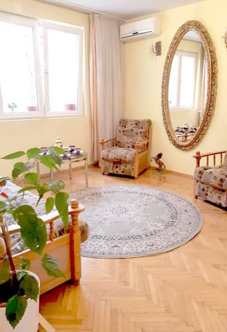 Nice, Safe and Large 3 room apartment, near center