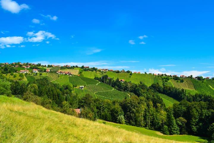 Schilcher-Residenz - unvergessliche Ausblicke
