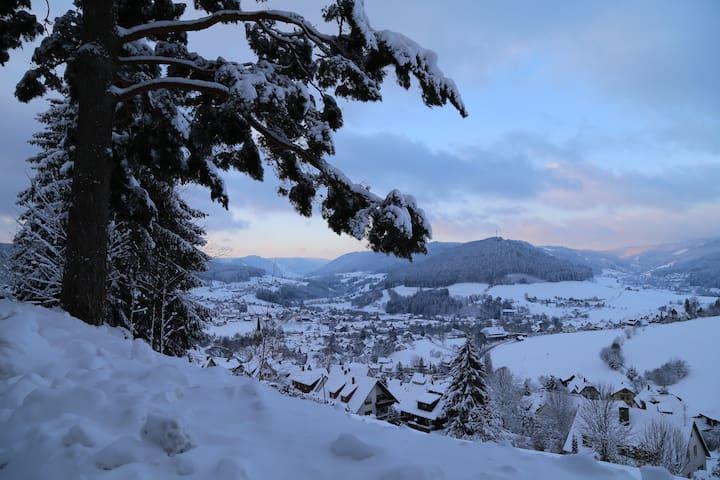 WinterWonderland - Baiersbronn im Schwarzwald