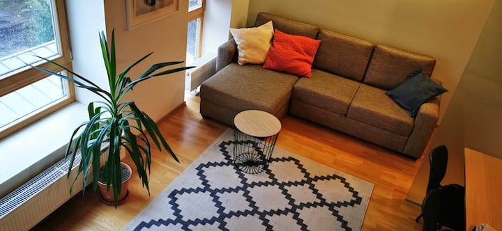 Cozy loft close to Glehni park, biker friendly