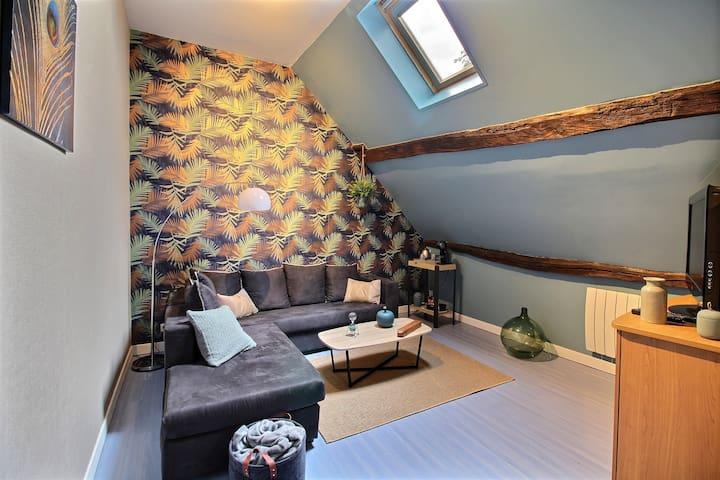 Grande Chambre + Salon, calme,  proche de Bourges