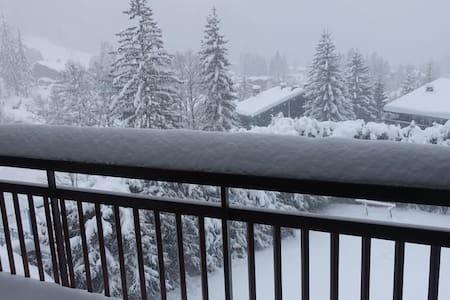 Beau Argentiére Chamonix Mont Blanc (incl. wi-fi) - Chamonix-Mont-Blanc - Huoneisto