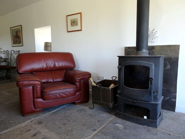 Log burner with a continuous supply of logs