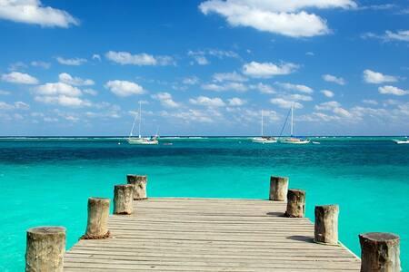 Estudio Mar y Selva, Puerto Morelos 1