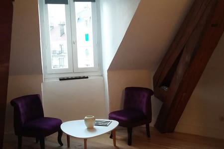 Superbe studio plein centre - Grenoble - Apartment