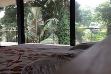 view from the bed room to the rain forest