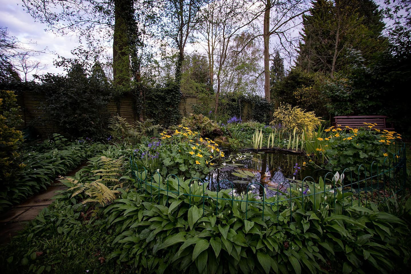 Pond at the end of the garden