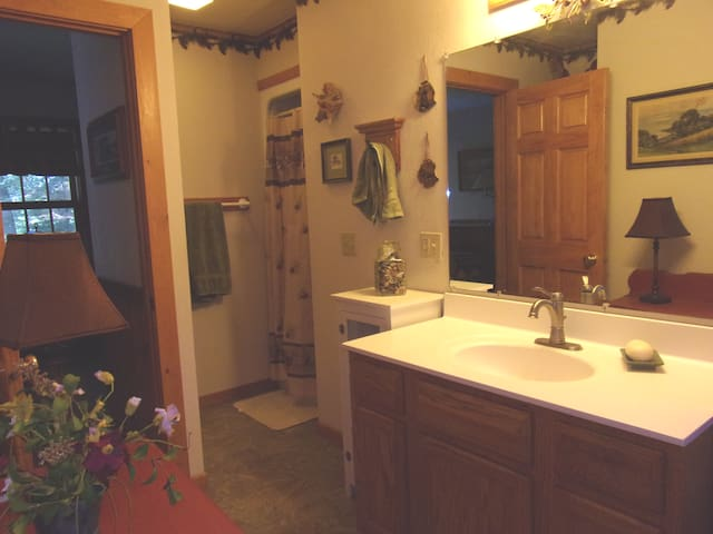 Spacious private master bath with shower