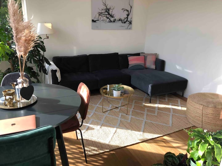 Luxury Apartment in hip Amsterdam-West