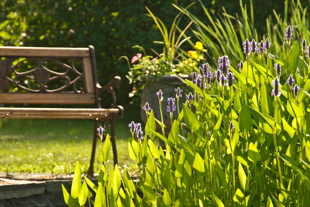 Relaxing outdoors is one of Vermont's greatest selling points.
