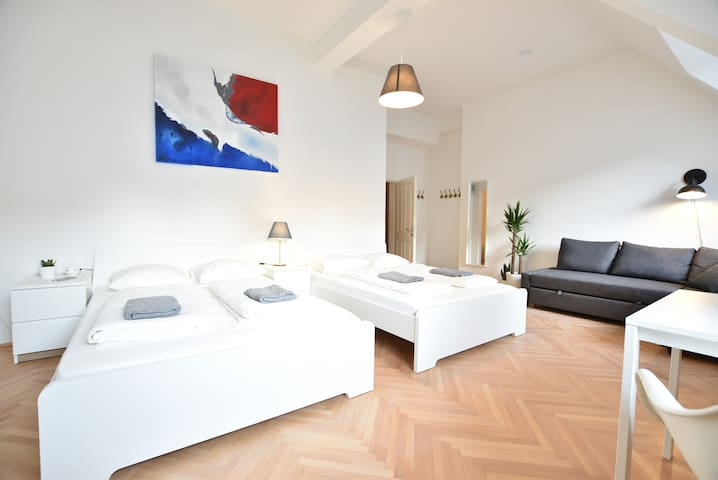 Spacious cozy Room in the Heart of Vienna