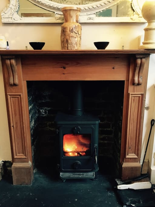 Beautiful little log fire for you