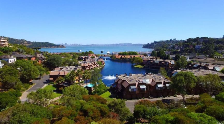 Ocean View-Walking Distance to Town - Belvedere Tiburon