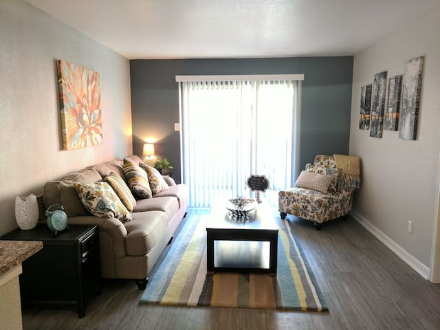 1 bedroom 1 bath in NRG/Med center