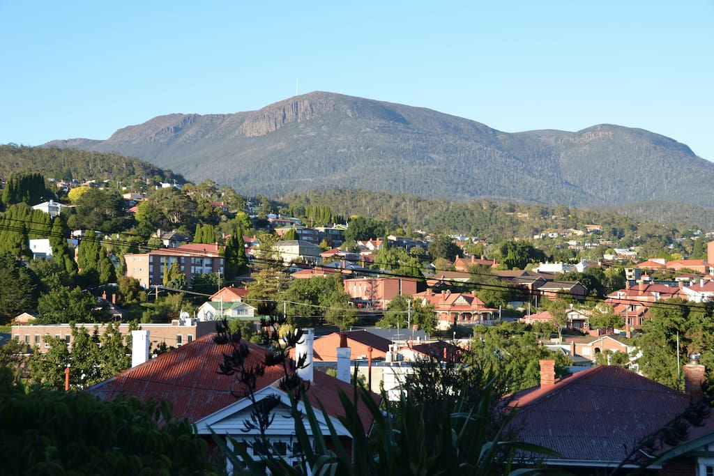The view of Mt Wellington from the driveway.