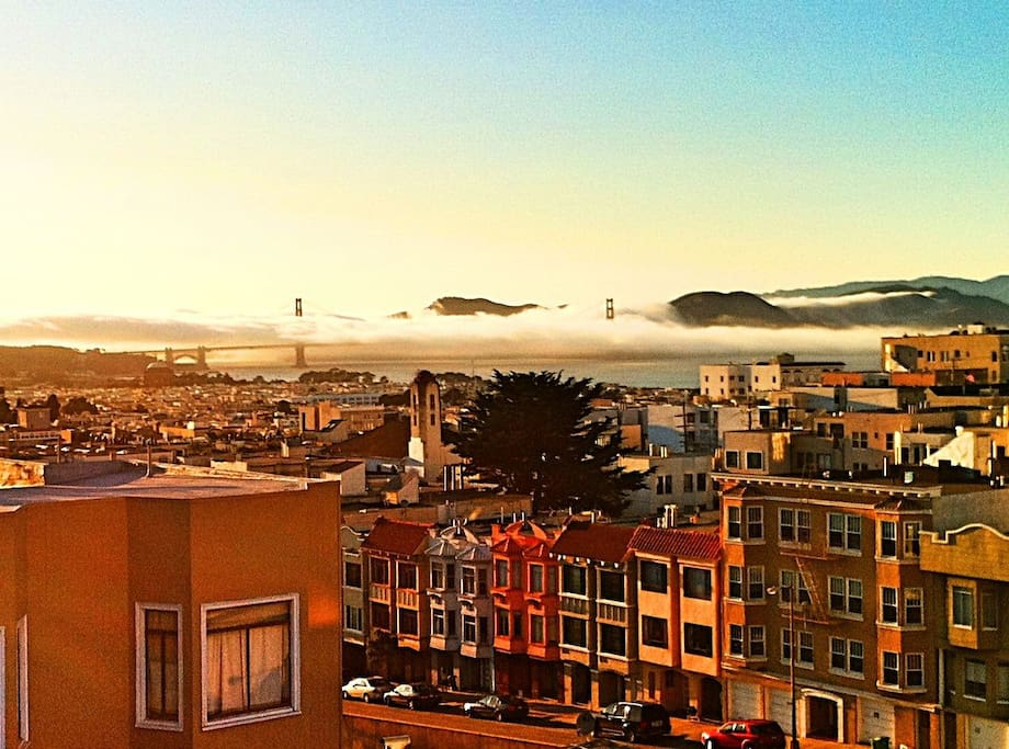 Summer in the City by the bay:)