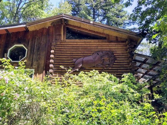 Log cabin studio and loft room by riparian creek