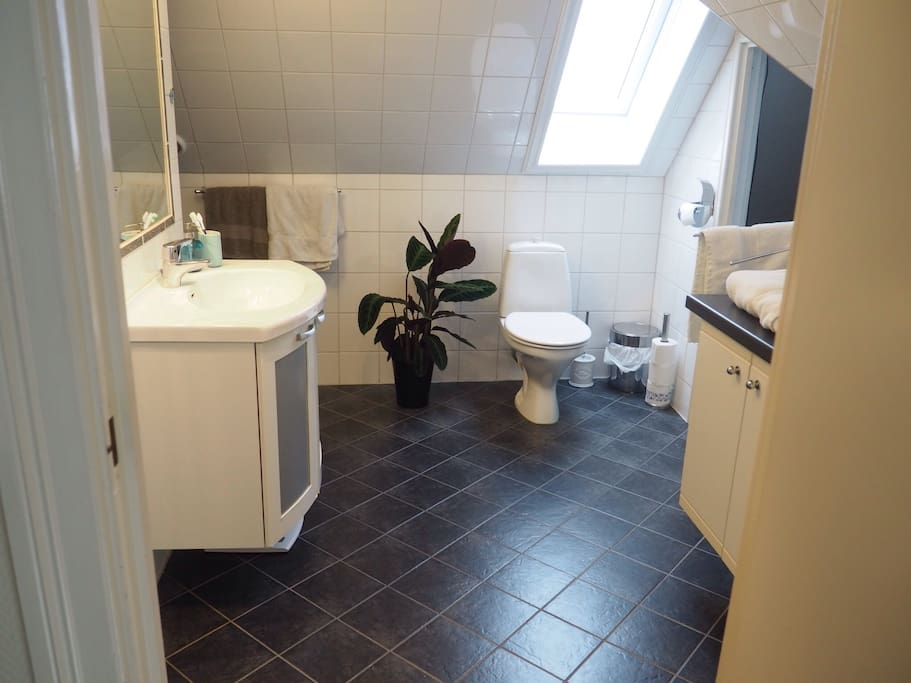 Big, clean bathroom with both shower and bathtub in second floor. Small bathroom also on first floor, connected with master bedroom