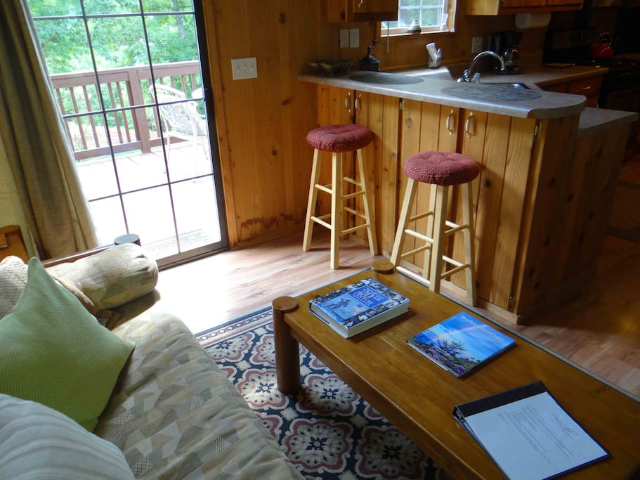 This is the living room of the Balsam Mountain Cabin.