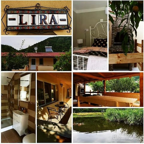 Casa Lira Orsova