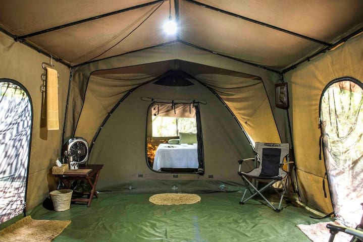Luxury Tent - AI with Daily Safari