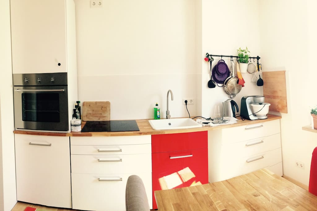Colourful kitchen with Induction Stove & Oven & Fridge - we share this space