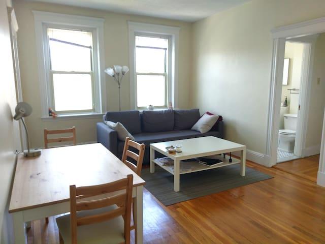 Spacious, Sunny 1-bd Apartment by Harvard