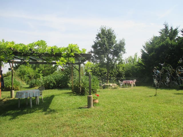Champs de Tournesol - Lartigue - Apartament