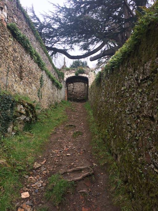 Ruelle du vieux St Florent