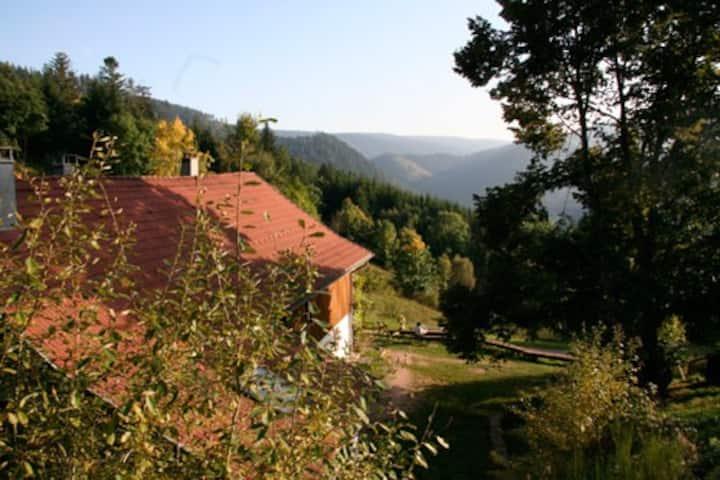 Appartement dans vielle ferme au coeur des Vosges