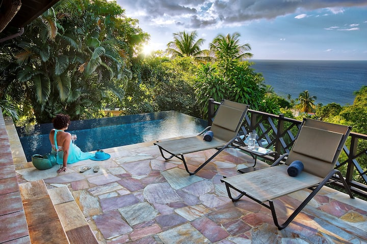 Lounge in Your Private Infinity Pool | Villa with an Ocean View!