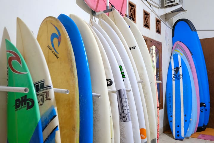 surfboard rentals and lessons