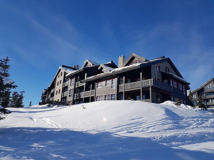 Norefjell Lekker leilighet med ski inn & out