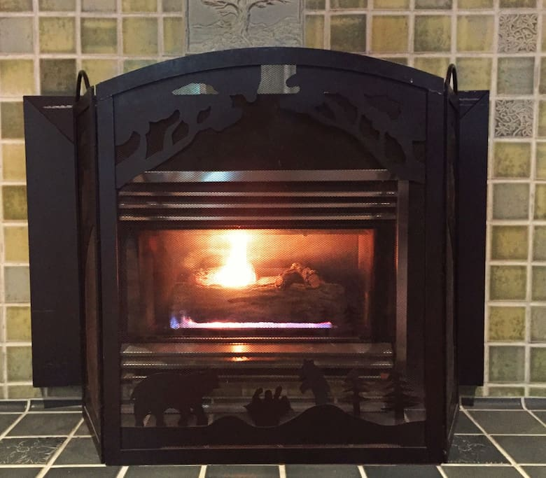 """""""The fireplace was a great touch of warmth and ambience"""" Geri"""