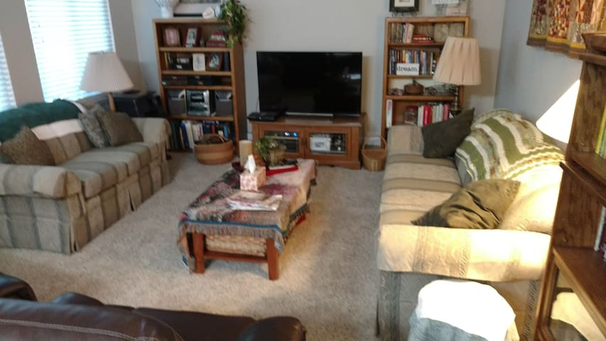 Living room with cable TV, PS3, games and controllers, Amazon fire stick.