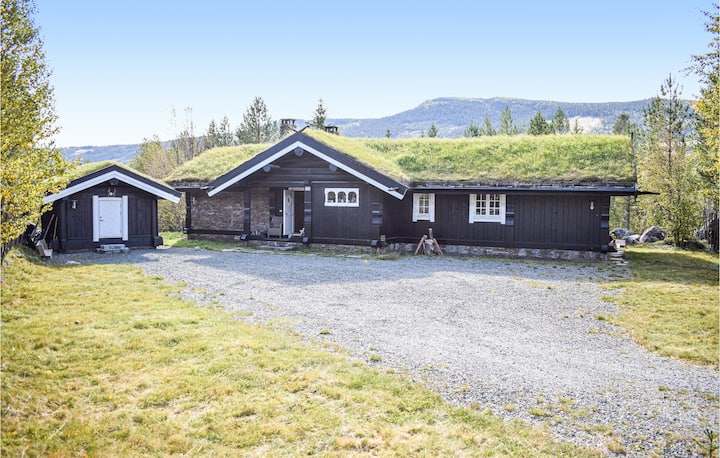 Nice home in Hemsedal with Jacuzzi, Sauna and 4 Bedrooms