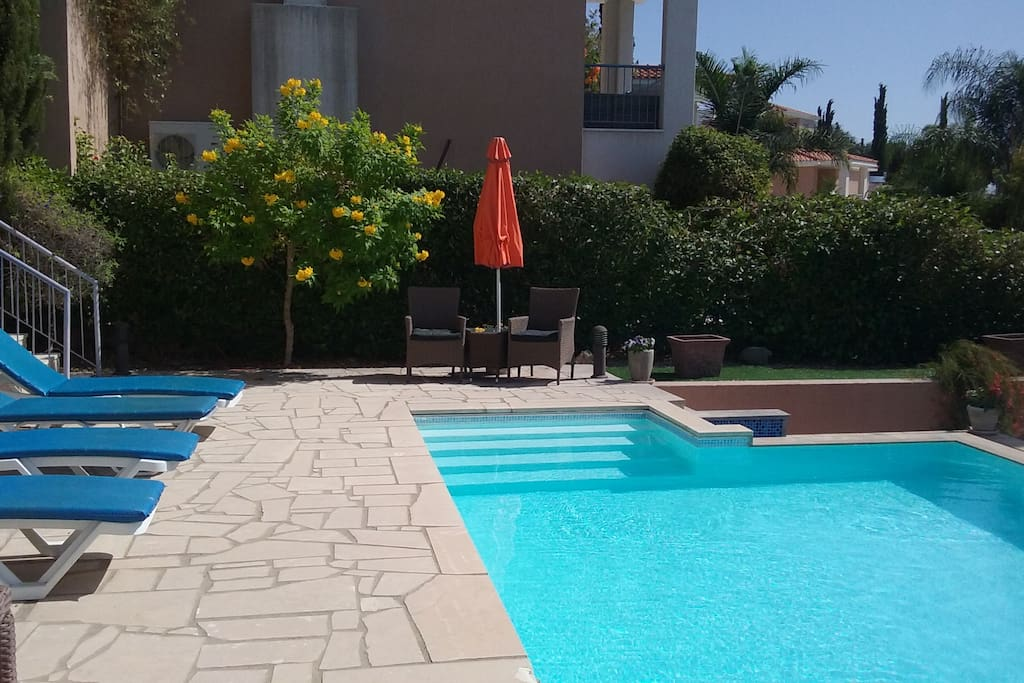 Roman steps into pool with plenty patio area for sunbathing