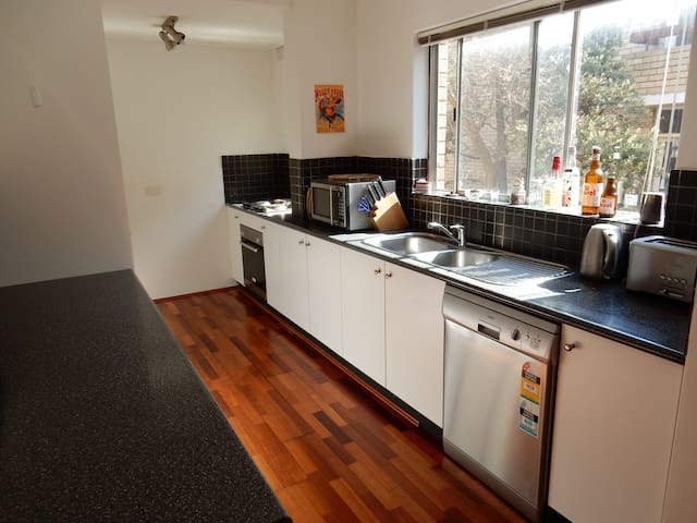 Sunny 1 bedroom with car space - Rose Bay - Apartment