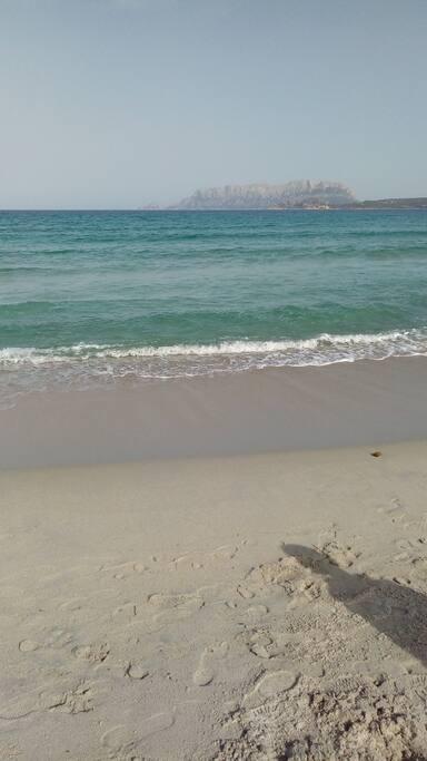 spiaggia di Olbia
