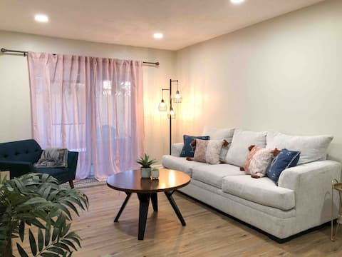 Luxury Apartment Downtown- 2bed/ 1bath
