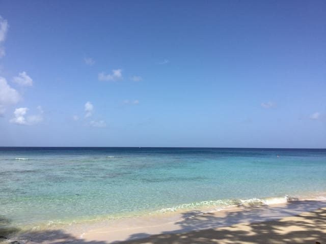 The west coast at Speightstown