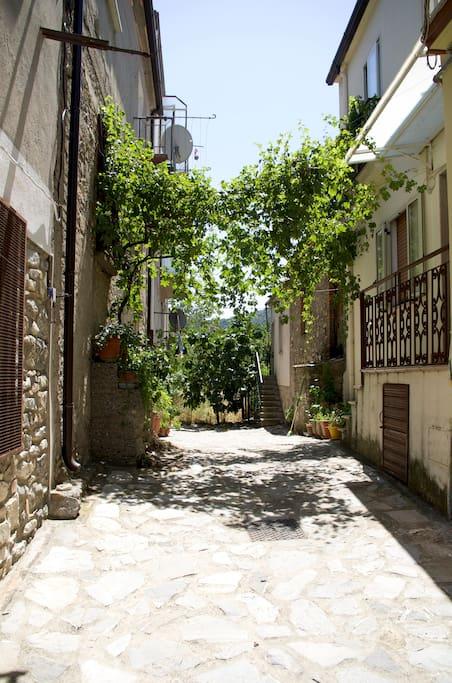the street / la strada