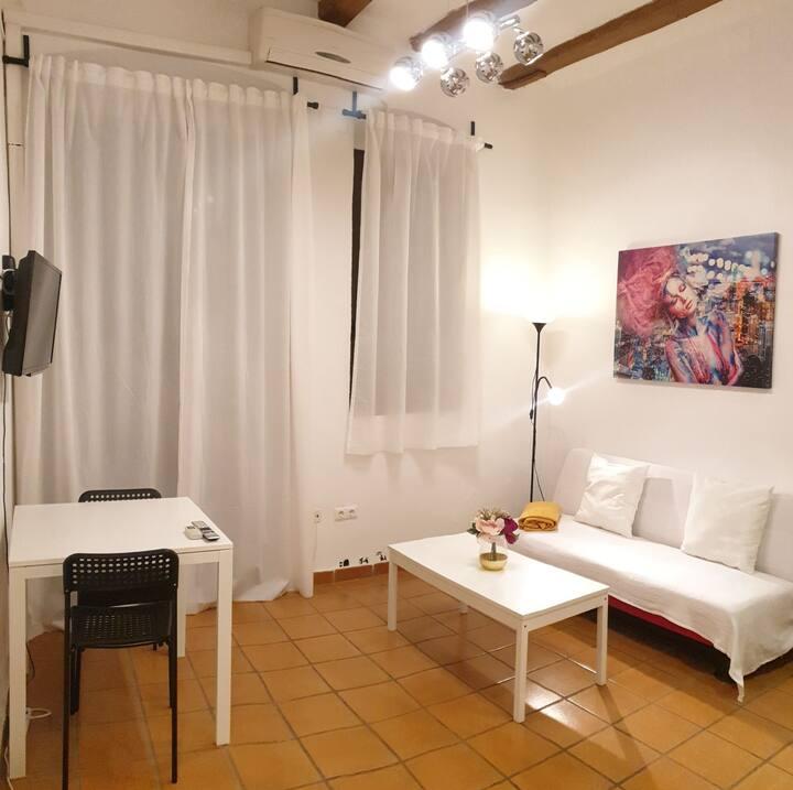 Cozy apartment in the city center el borne.