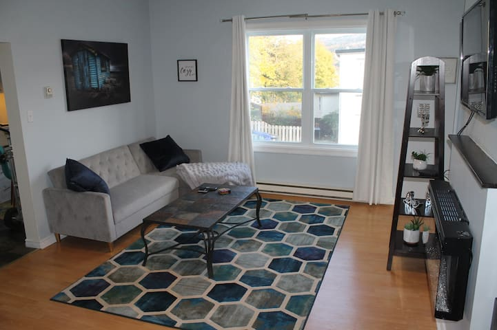 Downtown St Johns/Bright & spacious/Sleeps up to 6