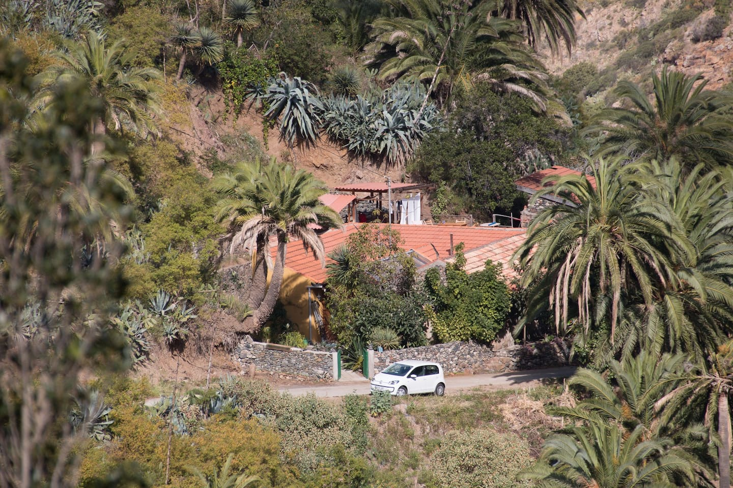 This is the whole country house complex (finca). The cottage is hidden behind the huge palm to the right.
